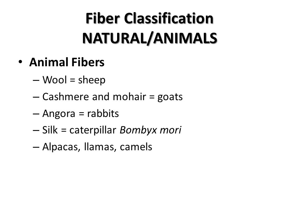 Fiber Classification NATURAL/ANIMALS Animal Fibers – Wool = sheep – Cashmere and mohair = goats – Angora = rabbits – Silk = caterpillar Bombyx mori – Alpacas, llamas, camels
