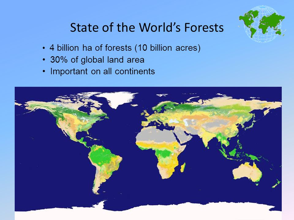 State of the World's Forests 4 billion ha of forests (10 billion acres) 30% of global land area Important on all continents