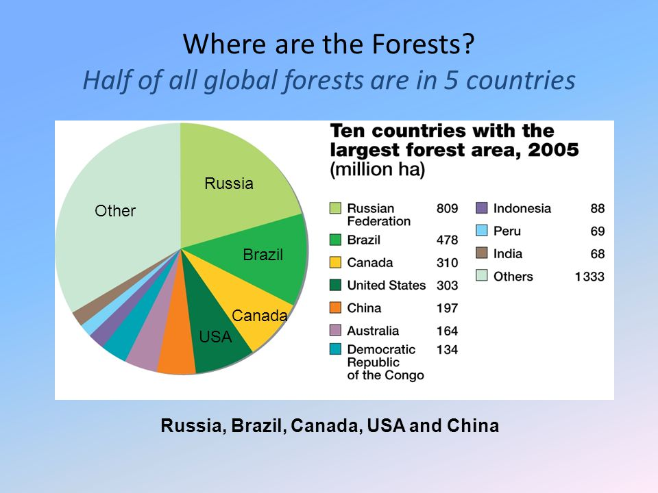 Russia, Brazil, Canada, USA and China Where are the Forests? Half of all global forests are in 5 countries Other Russia Brazil Canada USA