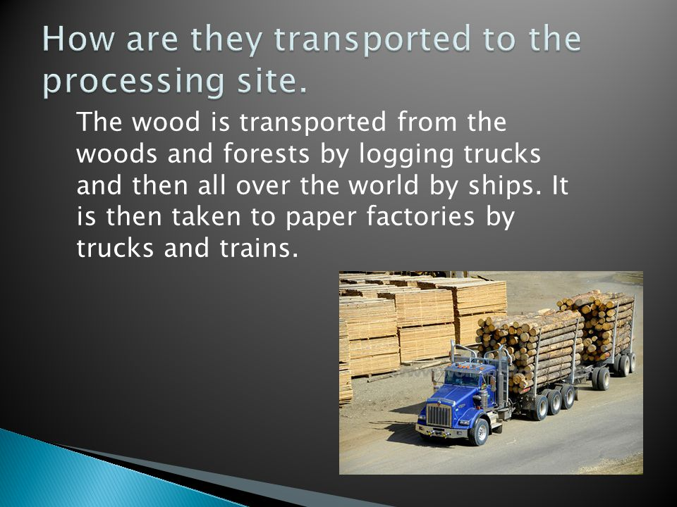 The wood is transported from the woods and forests by logging trucks and then all over the world by ships.