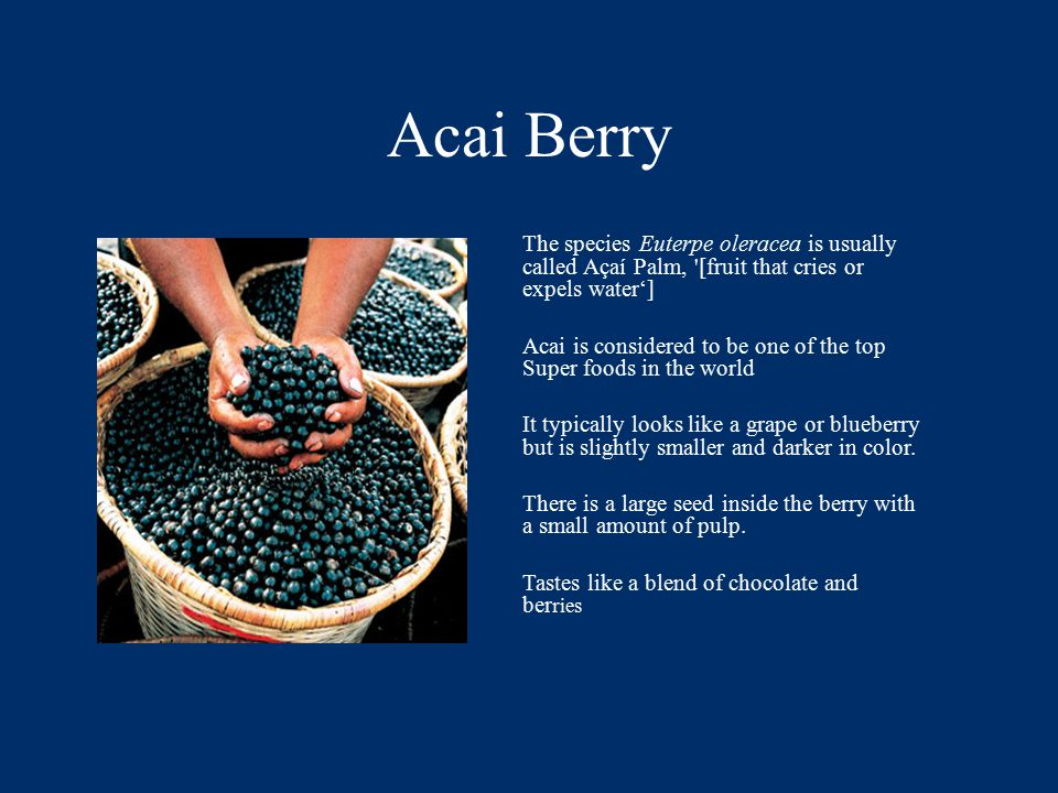 Acai Berry The species Euterpe oleracea is usually called Açaí Palm, [fruit that cries or expels water'] Acai is considered to be one of the top Super foods in the world It typically looks like a grape or blueberry but is slightly smaller and darker in color.