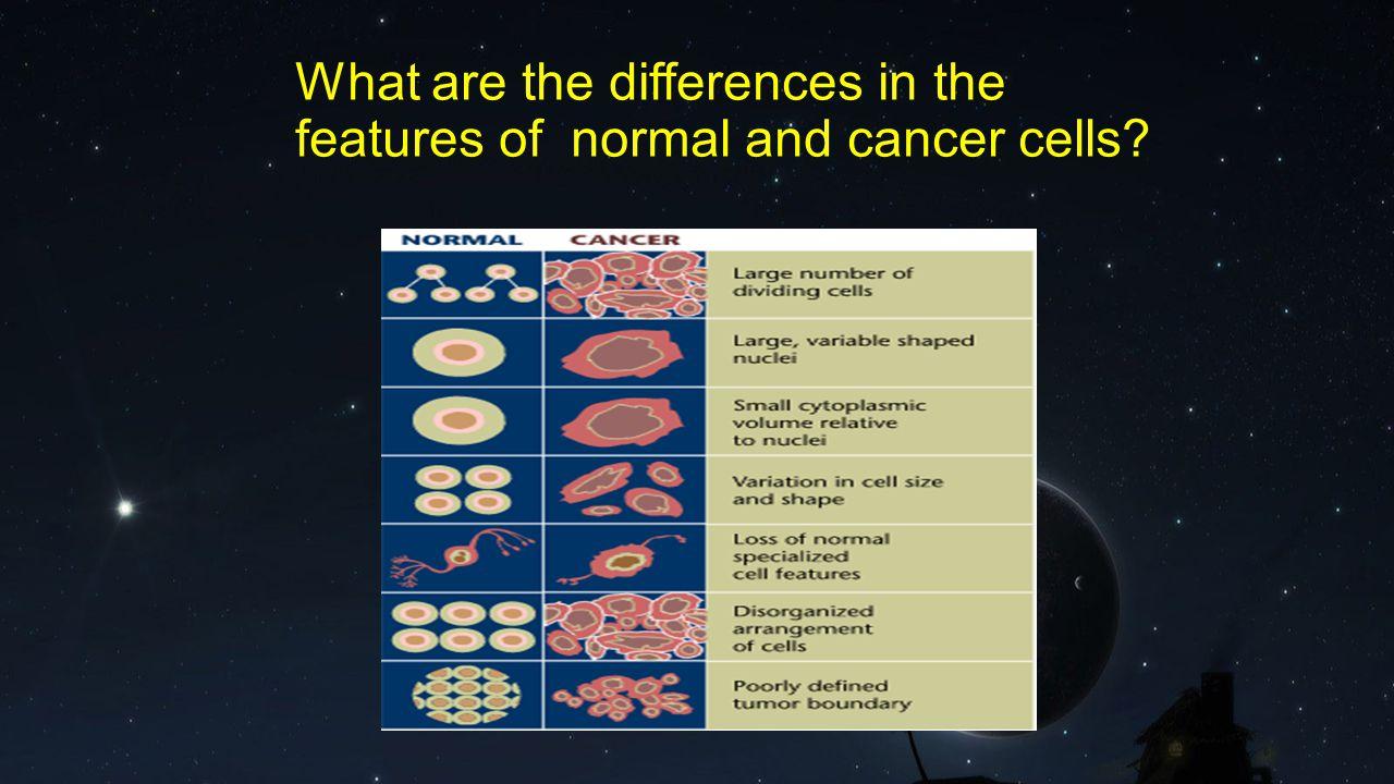Types of Cancer Carcinomas Sarcomas Lymphomas Leukaemias Adenomas