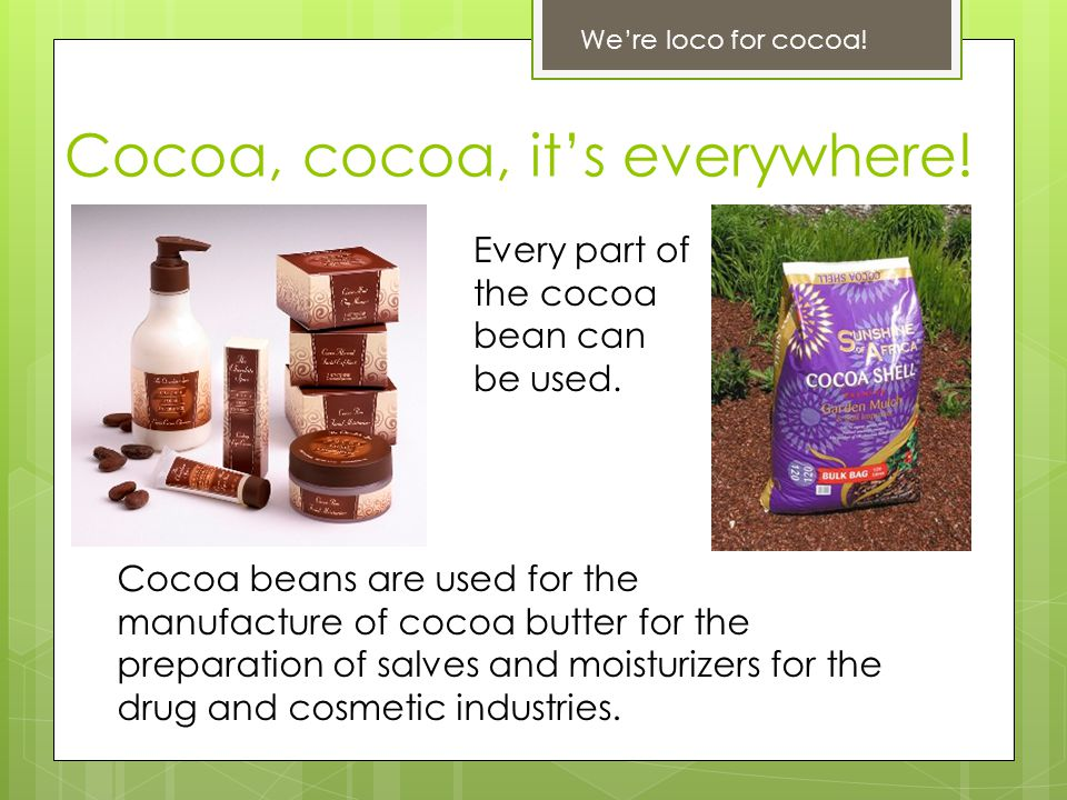 Cocoa, cocoa, it's everywhere! We're loco for cocoa! Every part of the cocoa bean can be used. Cocoa beans are used for the manufacture of cocoa butte