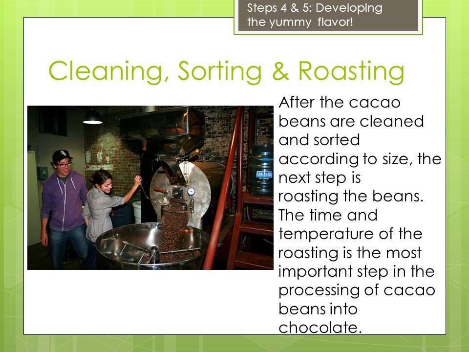 Cleaning, Sorting & Roasting After the cacao beans are cleaned and sorted according to size, the next step is roasting the beans. The time and tempera