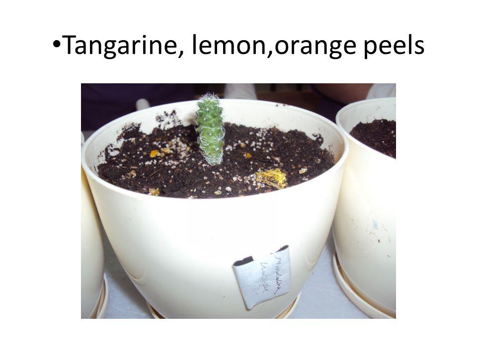 Tangarine, lemon,orange peels