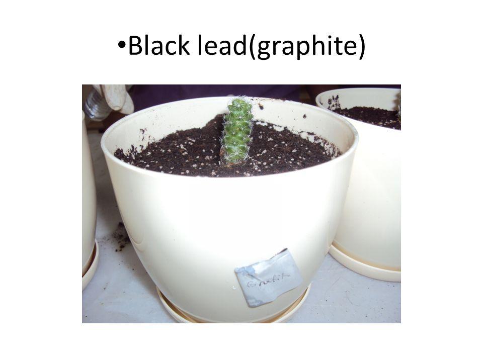 Black lead(graphite)