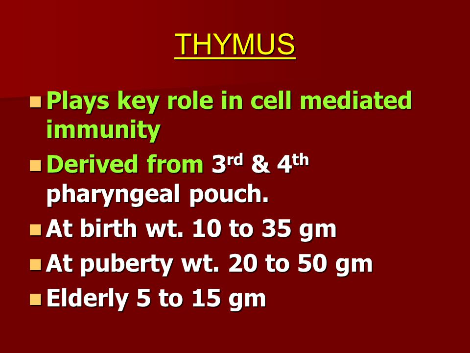 THYMUS Plays key role in cell mediated immunity Plays key role in cell mediated immunity Derived from 3 rd & 4 th pharyngeal pouch. Derived from 3 rd