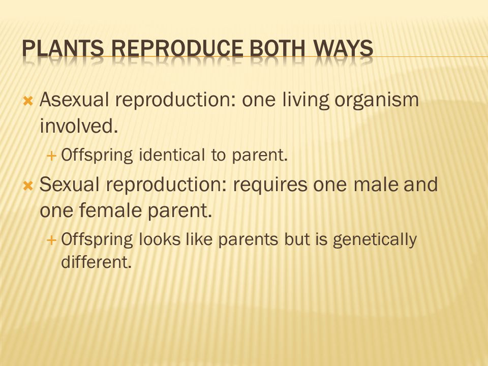  Asexual reproduction: one living organism involved.  Offspring identical to parent.  Sexual reproduction: requires one male and one female parent.