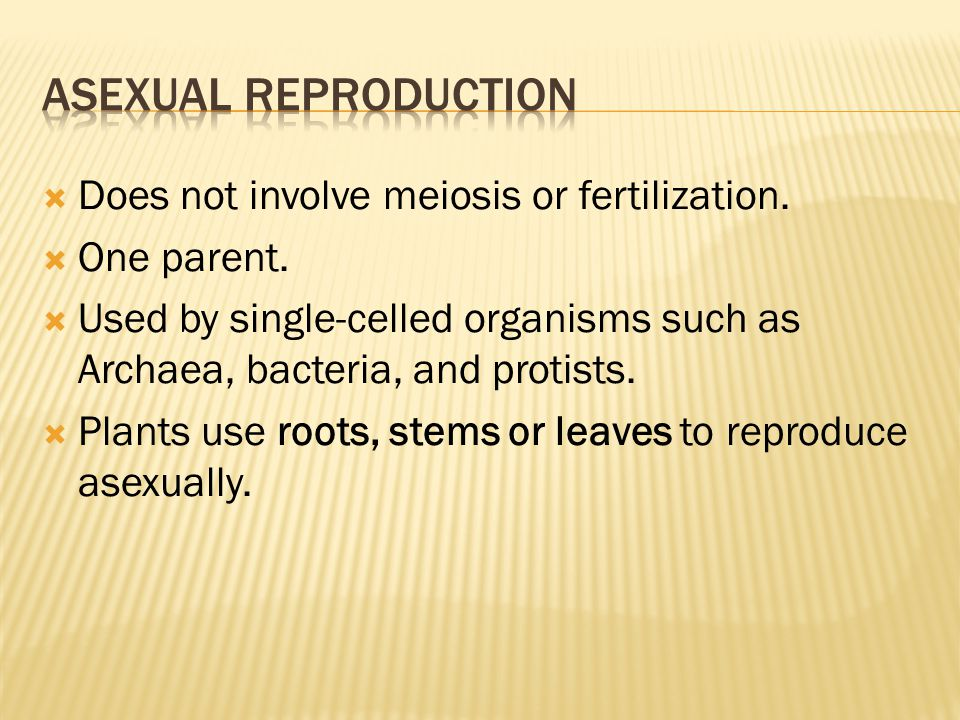  Does not involve meiosis or fertilization.  One parent.
