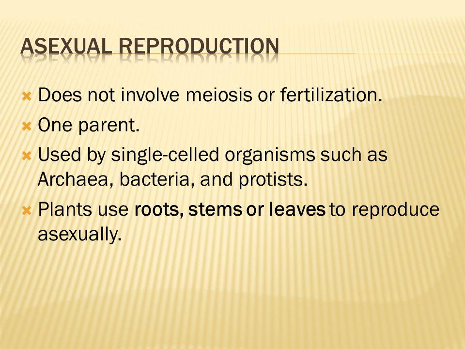  Does not involve meiosis or fertilization.  One parent.