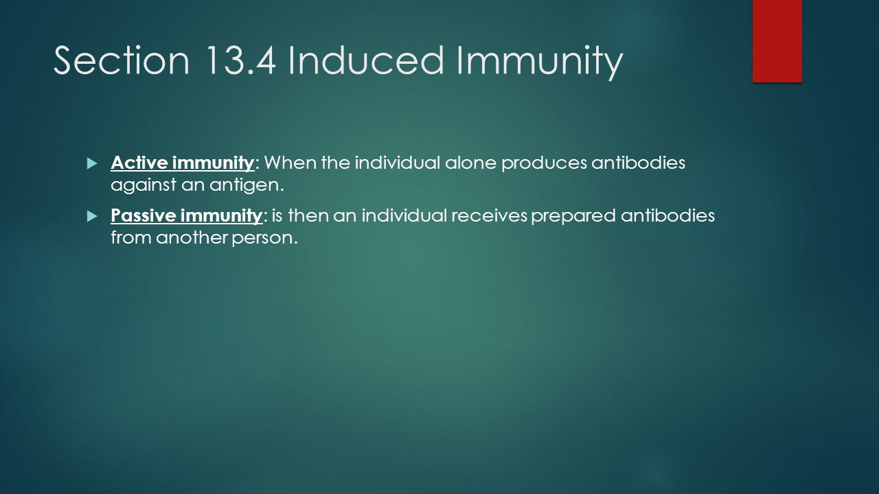 Section 13.4 Induced Immunity  Active immunity : When the individual alone produces antibodies against an antigen.