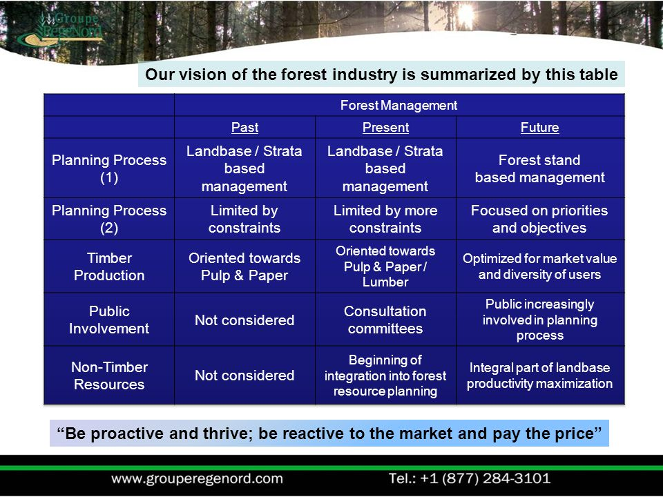 Our vision of the forest industry is summarized by this table Be proactive and thrive; be reactive to the market and pay the price