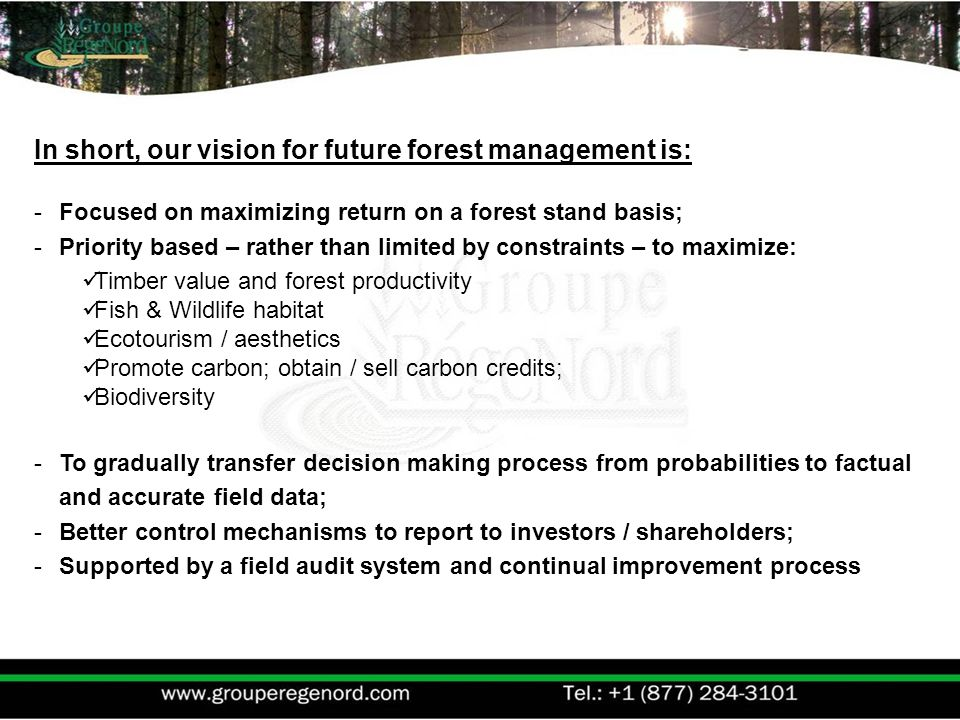 In short, our vision for future forest management is: -Focused on maximizing return on a forest stand basis; -Priority based – rather than limited by constraints – to maximize: Timber value and forest productivity Fish & Wildlife habitat Ecotourism / aesthetics Promote carbon; obtain / sell carbon credits; Biodiversity -To gradually transfer decision making process from probabilities to factual and accurate field data; -Better control mechanisms to report to investors / shareholders; -Supported by a field audit system and continual improvement process