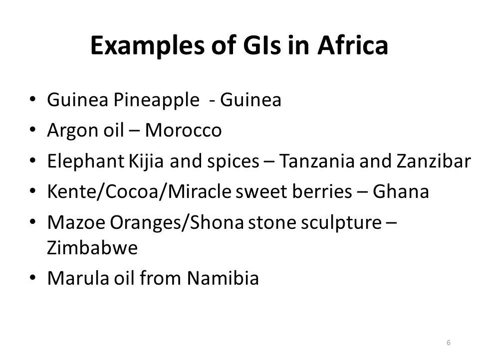 6 Examples of GIs in Africa Guinea Pineapple - Guinea Argon oil – Morocco Elephant Kijia and spices – Tanzania and Zanzibar Kente/Cocoa/Miracle sweet berries – Ghana Mazoe Oranges/Shona stone sculpture – Zimbabwe Marula oil from Namibia