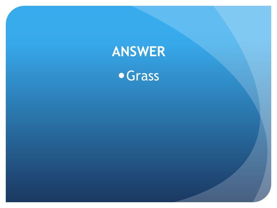 ANSWER Grass