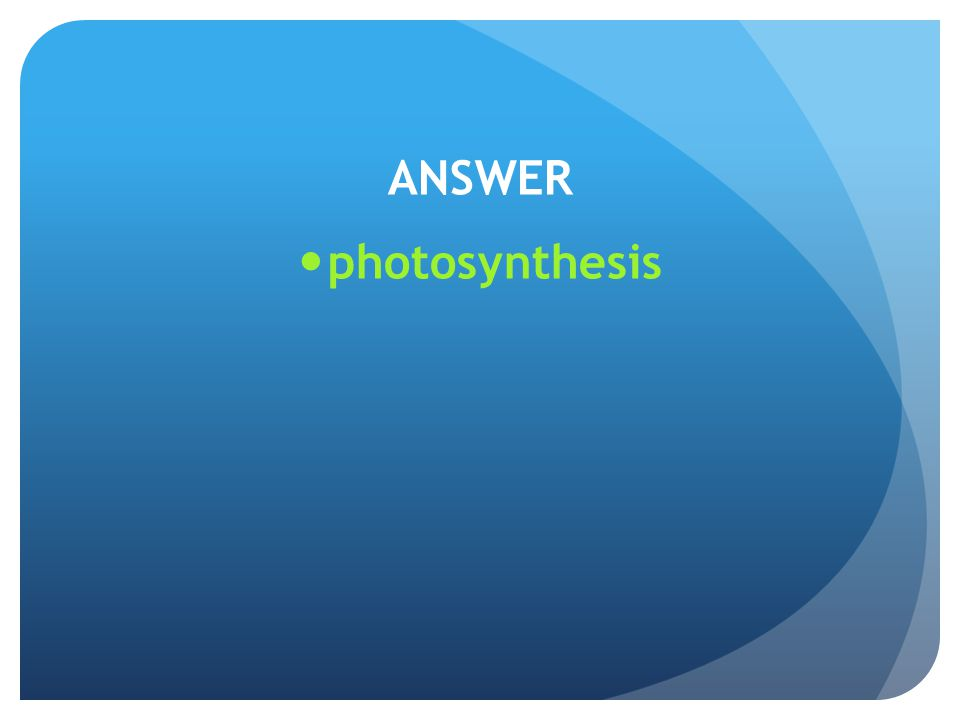 ANSWER photosynthesis