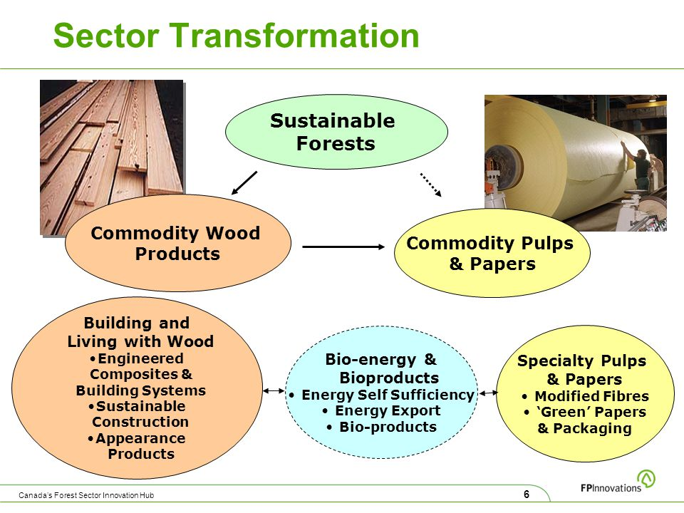 Sector Transformation Sustainable Forests Commodity Wood Products Commodity Pulps & Papers Building and Living with Wood Engineered Composites & Building Systems Sustainable Construction Appearance Products Specialty Pulps & Papers Modified Fibres 'Green' Papers & Packaging Bio-energy & Bioproducts Energy Self Sufficiency Energy Export Bio-products 6 Canada's Forest Sector Innovation Hub