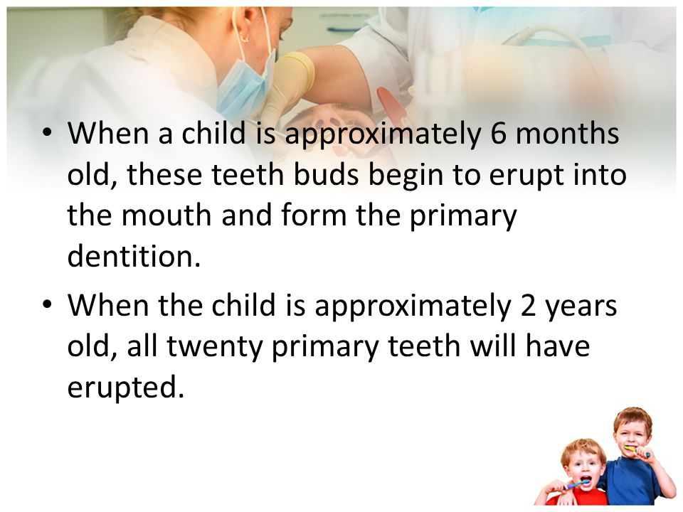 The two sets are: A primary, or deciduous, dentition A permanent, or succedaneous, dentition At birth, a newborn has approximately 44 teeth buds at va