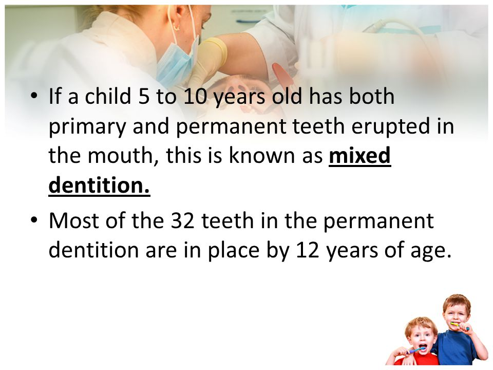 Between the ages of 6 and 12 years, all of the primary teeth are lost and replaced by the permanent dentition. Teeth continue erupting and replacing p