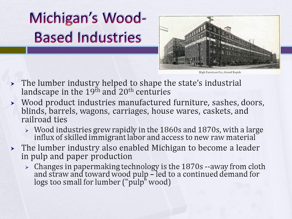  The lumber industry helped to shape the state's industrial landscape in the 19 th and 20 th centuries  Wood product industries manufactured furniture, sashes, doors, blinds, barrels, wagons, carriages, house wares, caskets, and railroad ties  Wood industries grew rapidly in the 1860s and 1870s, with a large influx of skilled immigrant labor and access to new raw material  The lumber industry also enabled Michigan to become a leader in pulp and paper production  Changes in papermaking technology is the 1870s --away from cloth and straw and toward wood pulp – led to a continued demand for logs too small for lumber ( pulp wood)
