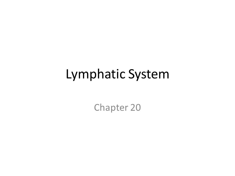 Lymphatic System Chapter 20
