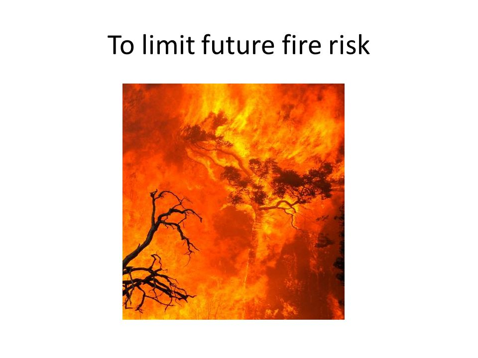 To limit future fire risk