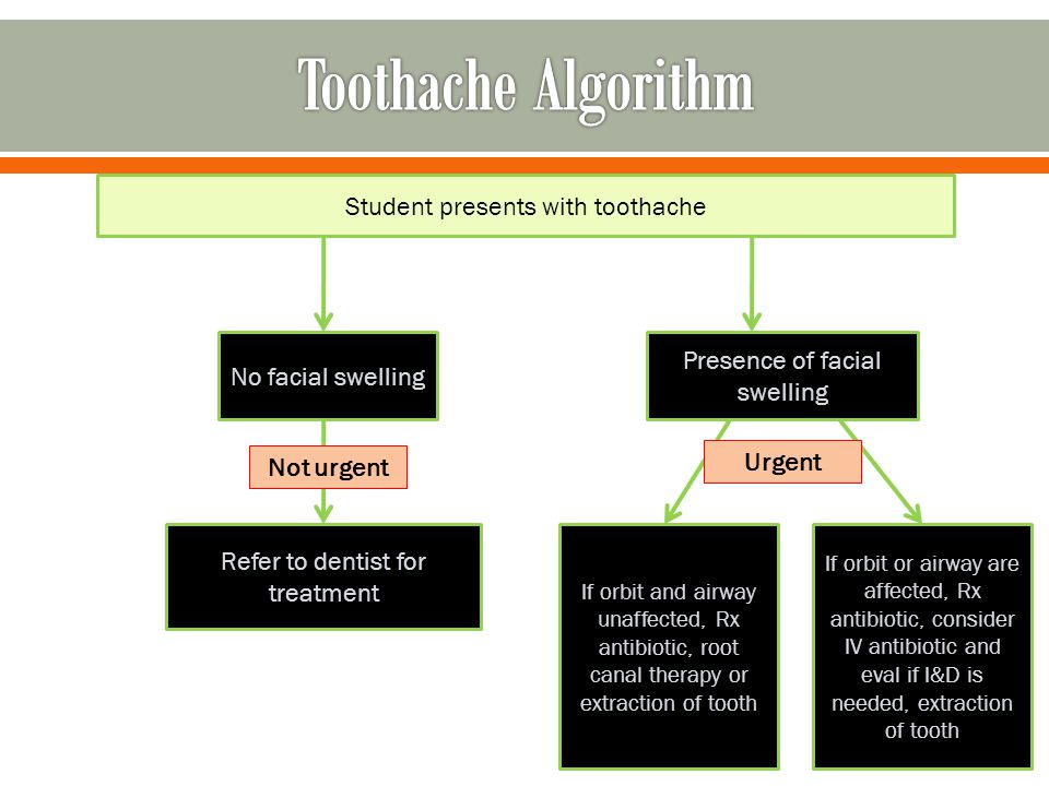 Student presents with toothache No facial swelling Presence of facial swelling Refer to dentist for treatment If orbit and airway unaffected, Rx antib
