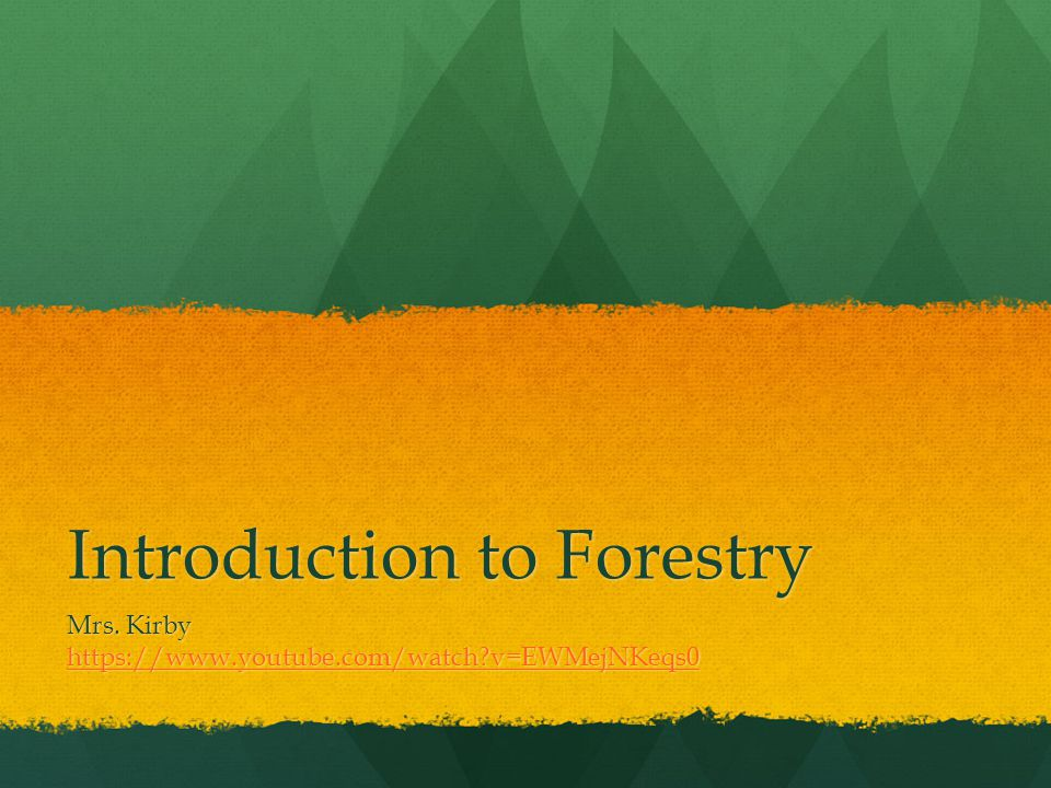 Introduction to Forestry Mrs. Kirby https://www.youtube.com/watch v=EWMejNKeqs0