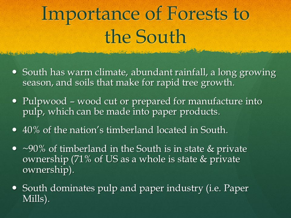 Importance of Forests to the South South has warm climate, abundant rainfall, a long growing season, and soils that make for rapid tree growth.