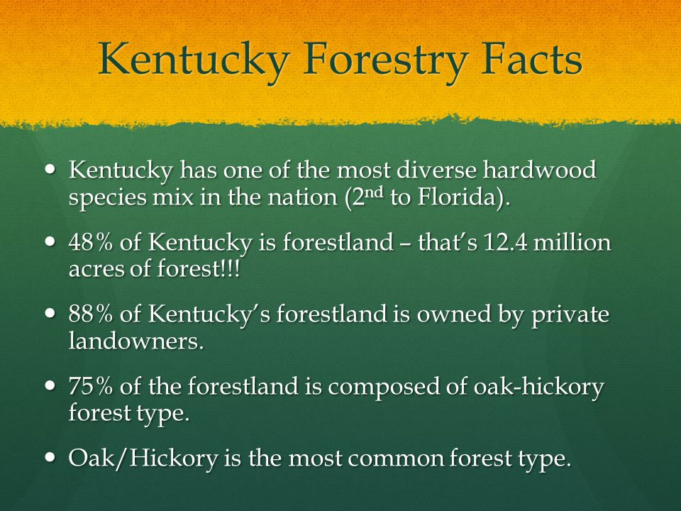 Kentucky Forestry Facts Kentucky has one of the most diverse hardwood species mix in the nation (2 nd to Florida).