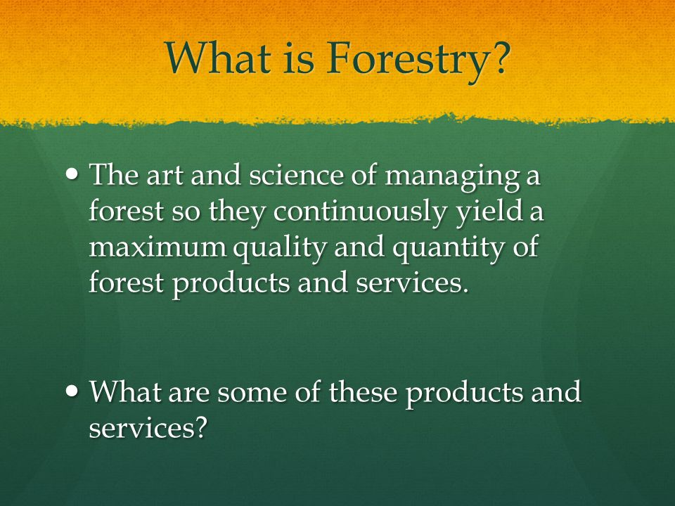 What is Forestry.