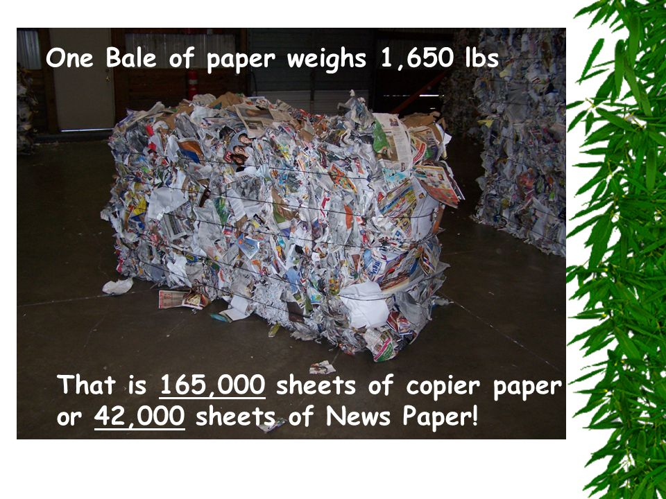 One Bale of paper weighs 1,650 lbs That is 165,000 sheets of copier paper or 42,000 sheets of News Paper!