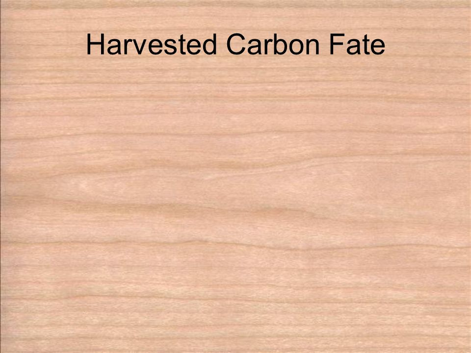 Harvested Carbon Fate
