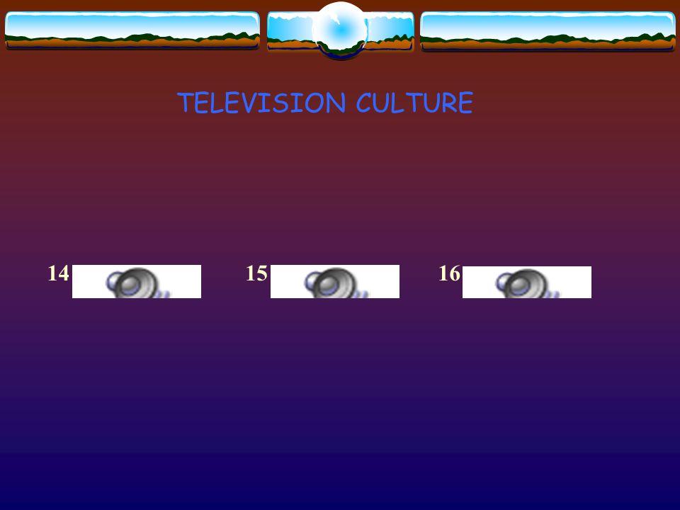 TELEVISION CULTURE 141615