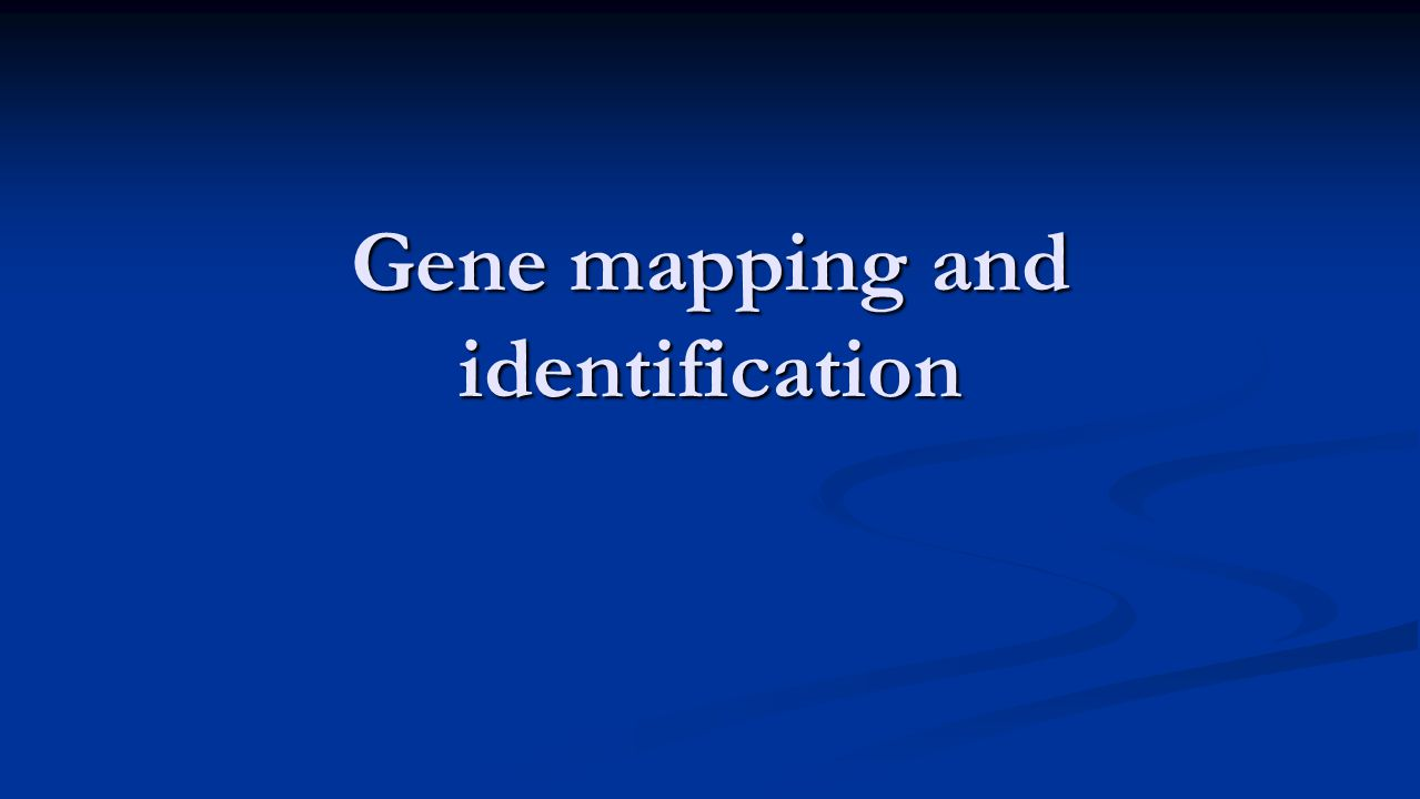 Gene mapping and identification