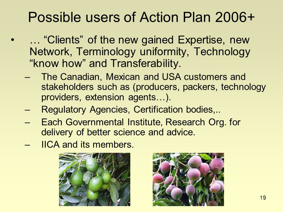 19 Possible users of Action Plan 2006+ … Clients of the new gained Expertise, new Network, Terminology uniformity, Technology know how and Transferability.