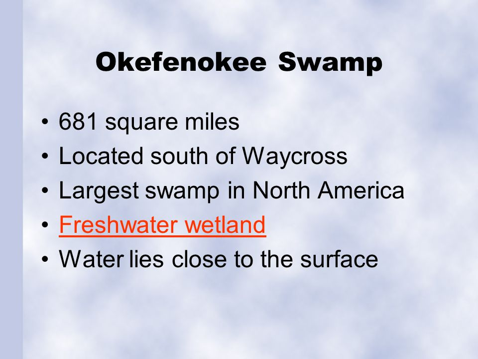 Okefenokee Swamp 681 square miles Located south of Waycross Largest swamp in North America Freshwater wetland Water lies close to the surface