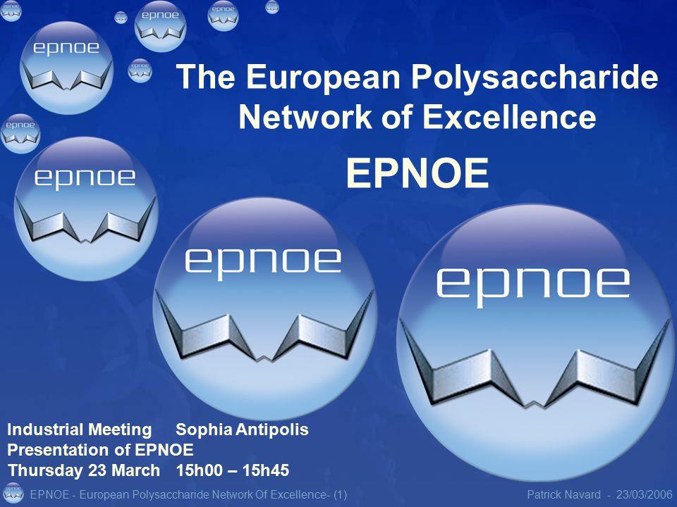 EPNOE - European Polysaccharide Network Of Excellence23/03/2006Patrick Navard -- (1) The European Polysaccharide Network of Excellence EPNOE Industrial Meeting Sophia Antipolis Presentation of EPNOE Thursday 23 March 15h00 – 15h45
