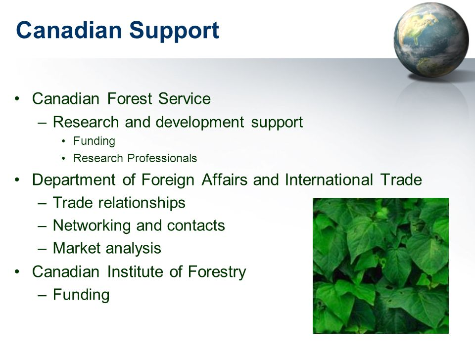 Canadian Support Canadian Forest Service –Research and development support Funding Research Professionals Department of Foreign Affairs and International Trade –Trade relationships –Networking and contacts –Market analysis Canadian Institute of Forestry –Funding