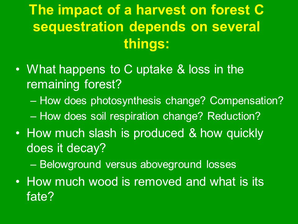 The impact of a harvest on forest C sequestration depends on several things: What happens to C uptake & loss in the remaining forest.