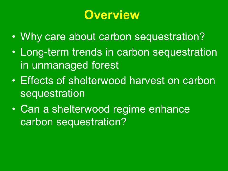 Overview Why care about carbon sequestration? Long-term trends in carbon sequestration in unmanaged forest Effects of shelterwood harvest on carbon se