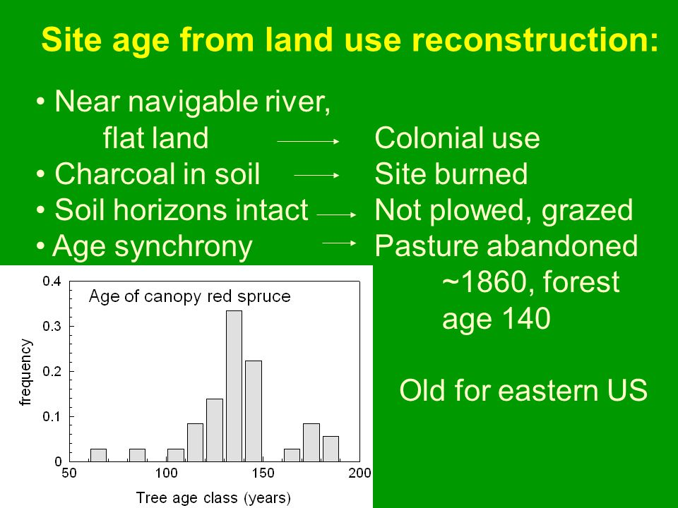 Near navigable river, flat landColonial use Charcoal in soilSite burned Soil horizons intactNot plowed, grazed Age synchronyPasture abandoned ~1860, f