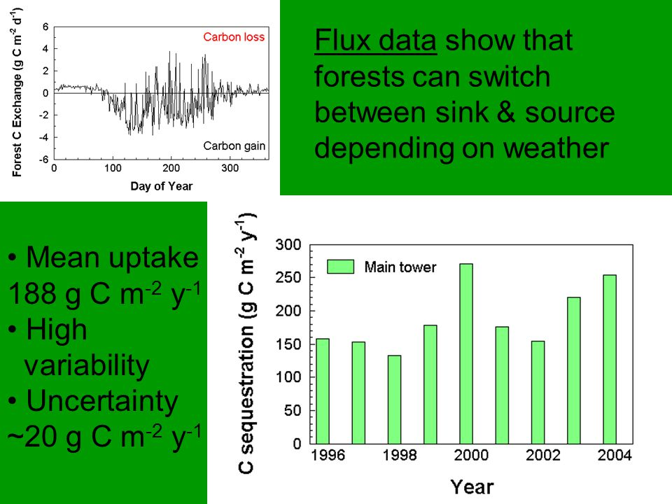 Flux data show that forests can switch between sink & source depending on weather Mean uptake 188 g C m -2 y -1 High variability Uncertainty ~20 g C m -2 y -1