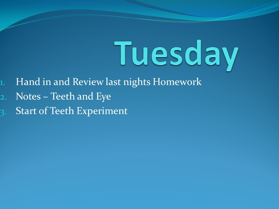 1. Hand in and Review last nights Homework 2. Notes – Teeth and Eye 3. Start of Teeth Experiment
