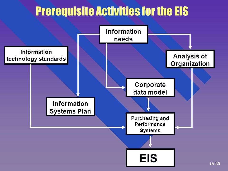 Prerequisite Activities for the EIS Purchasing and Performance Systems Information technology standards Information needs Analysis of Organization Inf