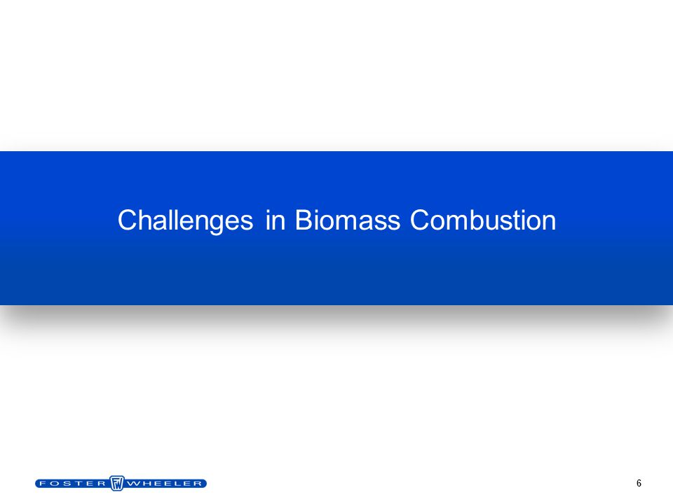 6 Challenges in Biomass Combustion