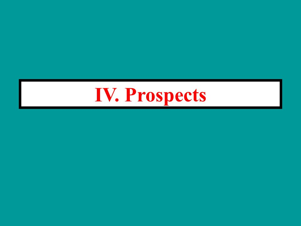 IV. Prospects
