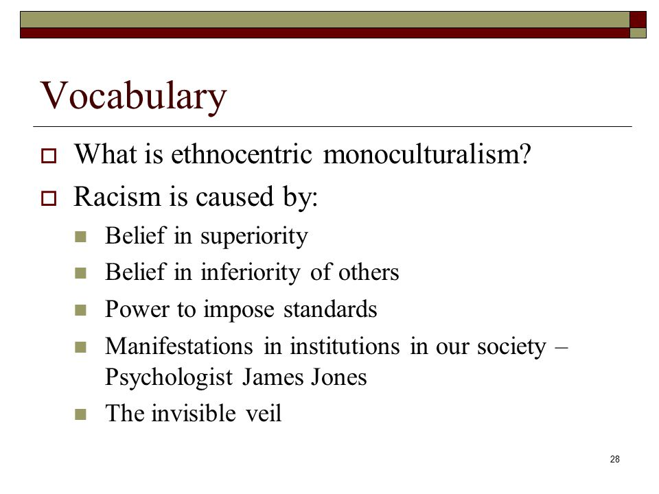 28 Vocabulary  What is ethnocentric monoculturalism.