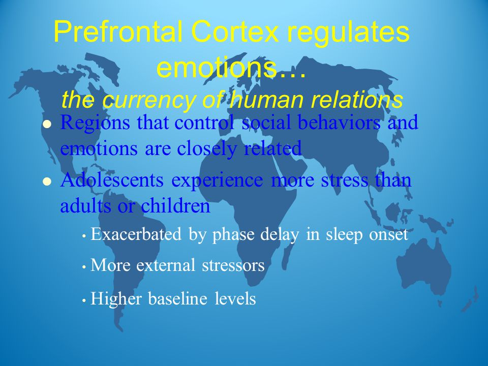 Prefrontal Cortex regulates emotions… the currency of human relations l Regions that control social behaviors and emotions are closely related l Adolescents experience more stress than adults or children Exacerbated by phase delay in sleep onset More external stressors Higher baseline levels