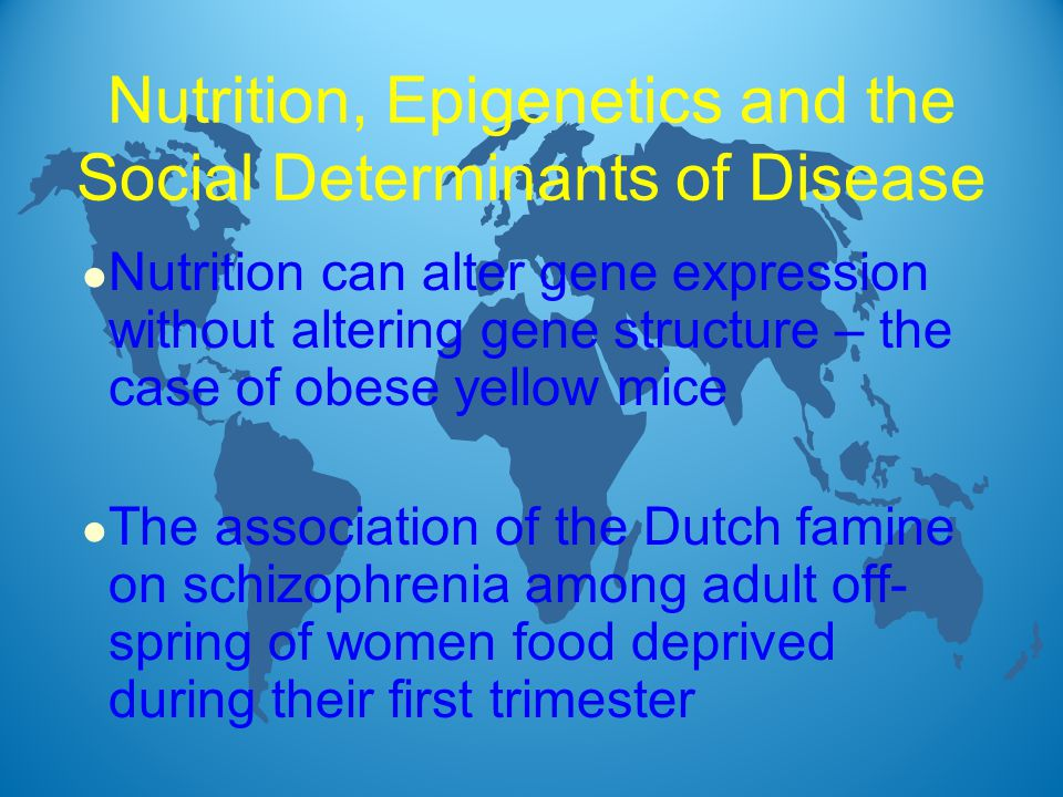 l Nutrition can alter gene expression without altering gene structure – the case of obese yellow mice l The association of the Dutch famine on schizophrenia among adult off- spring of women food deprived during their first trimester Nutrition, Epigenetics and the Social Determinants of Disease